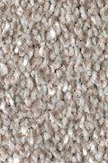 Mohawk True Unity - Ancestral Carpet