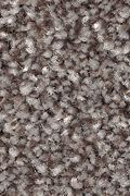 Mohawk True Unity - Bittersweet Carpet