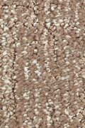 Mohawk Natural Artistry - Rich Earth Carpet