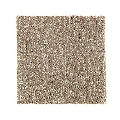 Distinctive Nature in Urban Taupe - Carpet by Mohawk Flooring
