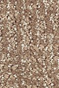 Mohawk Natural Treasure - Rich Earth Carpet
