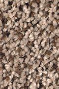 Mohawk Soft Dimensions I - Coppersheen Carpet