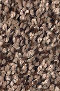 Mohawk Soft Dimensions I - Stratford Brown Carpet
