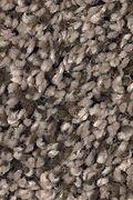Mohawk Soft Dimensions II - Camelot Carpet