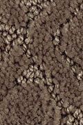 Mohawk Balanced Harmony - Cavern Carpet