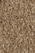Mohawk Homefront I - Desert Mud Carpet