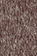 Mohawk Homefront II - Flora Carpet