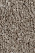 Mohawk Homefront II - Wool Socks Carpet