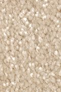 Mohawk Homefront II - Honeywood Carpet