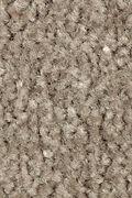 Mohawk Homefront II - Teak Carpet