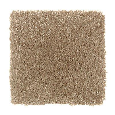 Sensible Style II in Desert Mud - Carpet by Mohawk Flooring