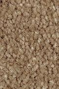 Mohawk Homefront II - Desert Mud Carpet