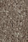 Mohawk Homefront II - Coco Mocha Carpet