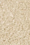 Mohawk Homefront III - Champagne Bubble 15FT Carpet
