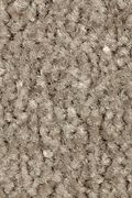 Mohawk Homefront III - Teak 12FT Carpet