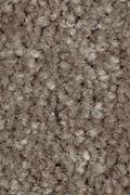 Mohawk Homefront III - Coco Mocha 15FT Carpet