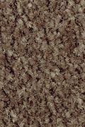 Mohawk Homefront III - Rustic Beam 15FT Carpet