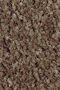 Mohawk Homefront III - Rustic Beam 12FT Carpet