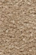 Mohawk Homefront III - Spiced Tea 12FT Carpet