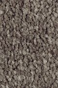 Mohawk Homefront III - Night Phantom 12FT Carpet