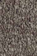 Mohawk Homefront III - Night Phantom 12FT Carpet