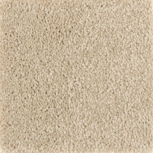 Mohawk Industries Iconic Idea Solid Loom Weave Carpet
