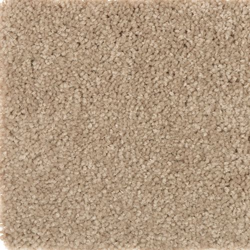 Charming Elegance Solid Wet Sand 526