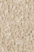 Mohawk Elegant Appeal I - Ancient Scroll Carpet