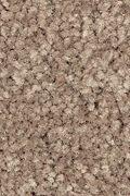 Mohawk Elegant Appeal I - Seasons Change Carpet