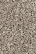 Mohawk Elegant Appeal II - Tomorrows Taupe Carpet