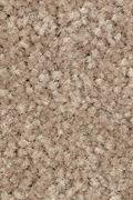 Mohawk Elegant Appeal II - Dash Ospice Carpet