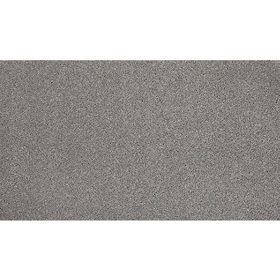 Luxurious Desire in Antiqued Silver - Carpet by Mohawk Flooring