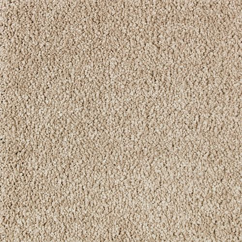 Mohawk Industries Exquisite Attraction Luxury Carpet San