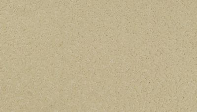 ProductVariant swatch small for Lamb's Wool flooring product