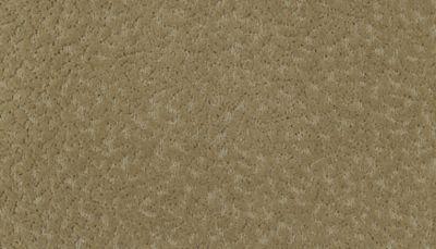ProductVariant swatch small for Rococo Beige flooring product