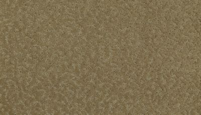 ProductVariant swatch small for Light Maple flooring product