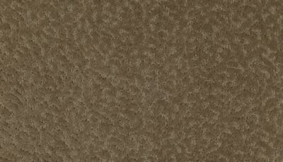 ProductVariant swatch small for Montebello flooring product