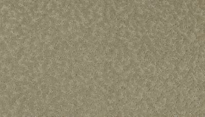 ProductVariant swatch small for Mystique flooring product