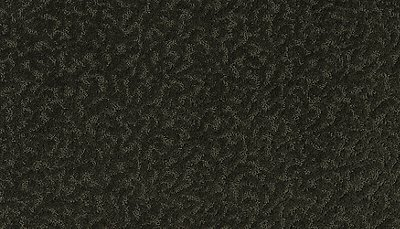 ProductVariant swatch small for Raven flooring product