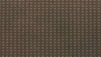 ProductVariant swatch small for Dust Bowl flooring product