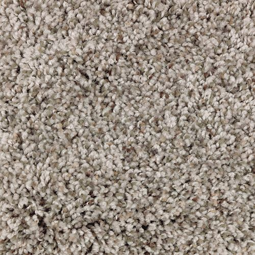 Mohawk Industries Color Cascade Greige Carpet Spring
