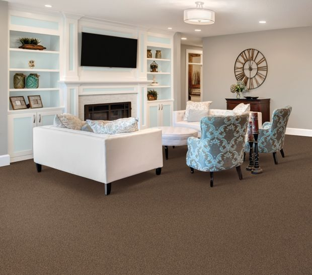 Luxurious Array Tranquil Bay 517