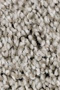 Mohawk True Charm - True Taupe Carpet