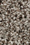 Mohawk True Charm - Dark Fudge Carpet
