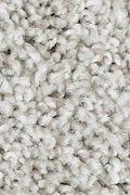 Mohawk True Charm - Notion Carpet