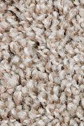 Mohawk Perfect Attraction - Santa Fe Trail Carpet