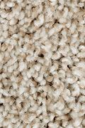 Mohawk Perfect Attraction - Thatch Roof Carpet