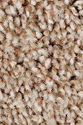 Mohawk Perfect Attraction - Wilderness Carpet