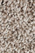 Mohawk Perfect Attraction - Loom Weave Carpet