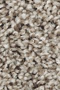 Mohawk Perfect Attraction - Fiddlewood Carpet